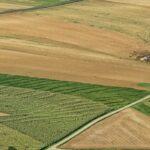 Georreferenciamento de imóveis rurais: o que é e para que serve?