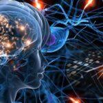 [Lição 9 de 10] Como o cérebro humano funciona e como utilizar isso para aumentar as vendas de seu escritório...