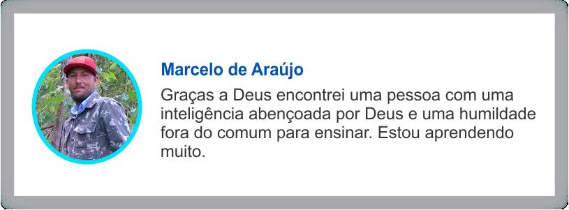 depoimento Marcelo de Araujo